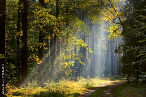 jesień na Mazurach - fototapety na wymiar