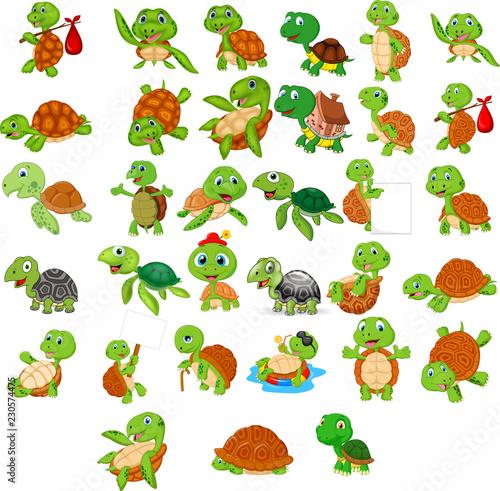 Naklejka premium Zestaw kolekcja kreskówka żółw