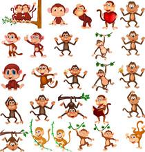 Cartoon Happy Monkey Collectio...