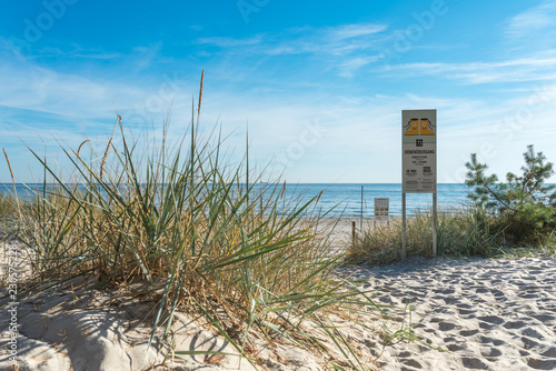 Fotografía Beach grass close to dunes transition at the Prora beach of the seaside resort B