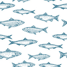 Hand Drawn Fish Vector Seamles...