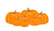 Vector Illustration. Pile Autumn Pumpkins On White Background. Flat Design.