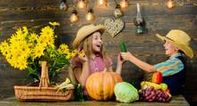 Autumn Harvest Festival. Children Play Vegetables Pumpkin. Kids Girl Boy Wear Cowboy Farmer Style Hat Celebrate Harvest Festival. Celebrate Fall Traditions. Elementary School Fall Festival Idea