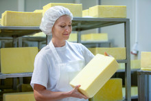 Female Worker On Yellow Cheese...