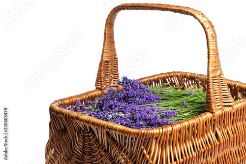 Aluminium Prints Picnic Basket with a lavender, isolated on white background