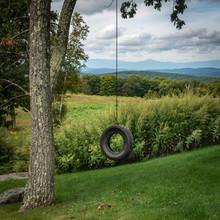 Old Tire Swing In Hudson Valley Landscape