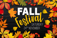November Fall Autumn Festival Announcement, Invitation Banner Design, Template With Fallen Leaves, Realistic Colorful Foliage With Text