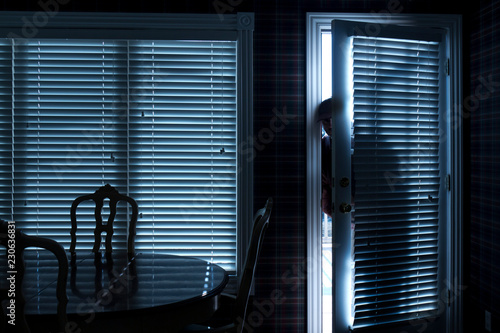 This photo illustrates a home break in at night through a back door from inside the residence Canvas Print