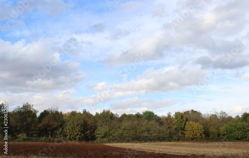 Fotografie, Obraz  Paesaggio Autunnale e cielo nuvoloso