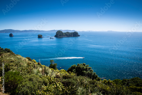 Foto op Canvas Cathedral Cove Scenic view of Coromandel Peninsula in New Zealand