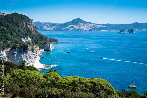 In de dag Cathedral Cove Scenic view of Coromandel Peninsula in New Zealand