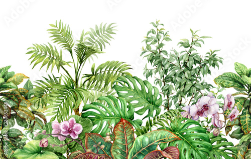In de dag Olijf Tropical Plants Line Seamless Pattern