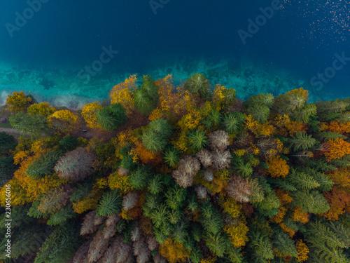 kolorowy-las-nad-jeziorem-antena-z-gory