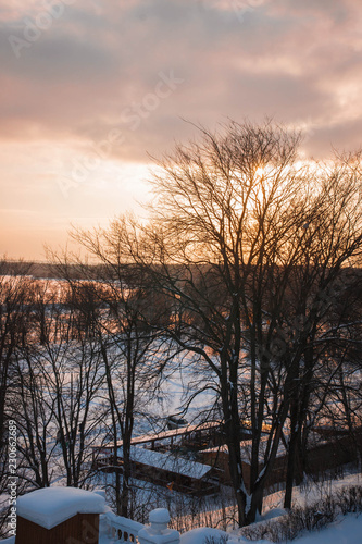 Poster Diepbruine Winter landscape in Arkhangelskoye at sunset, Moscow, Russia