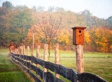 Birdhouse On The Fence In Autumn