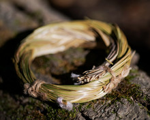 Wildcrafted Dried Sweetgrass (Hierochloe Odorata) Wrapped In Organic Cotton String. On Tree Bark In Forest Preserve. Smudging Ritual.