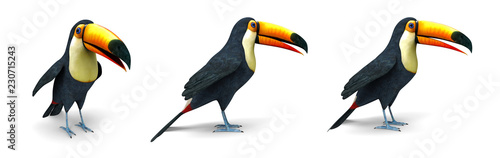 Aluminium Prints Birds, bees Toucan tropical bird - 3d image isolated on white background