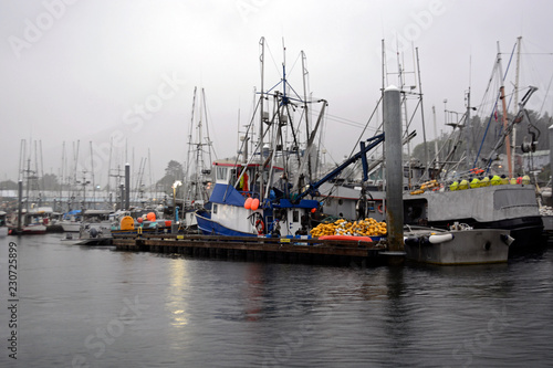 Fotografie, Obraz  Sitka Alaska fishing boats in harbour