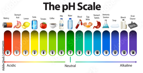 Photo A pH scale on white background