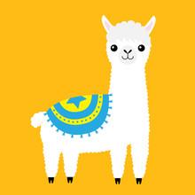 Alpaca Llama Animal. Cute Cartoon Funny Kawaii Character. Fluffy Fur. Long Hair. Childish Baby Collection. T-shirt, Greeting Card, Poster Template Print. Flat Design. Yellow Background.