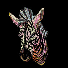 Embroidery Zebra For Clothing.