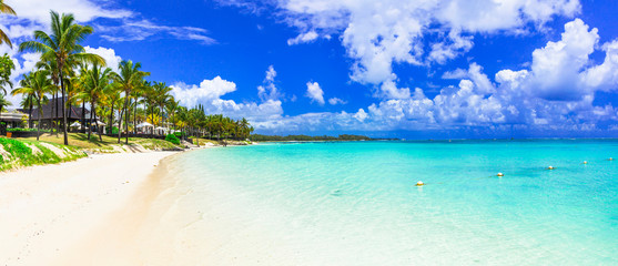 amazing tropical scenery - white beaches of Mauritius island