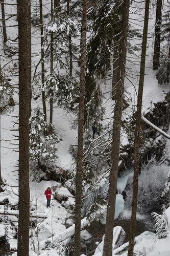 Wanderer im verschneiten Wald