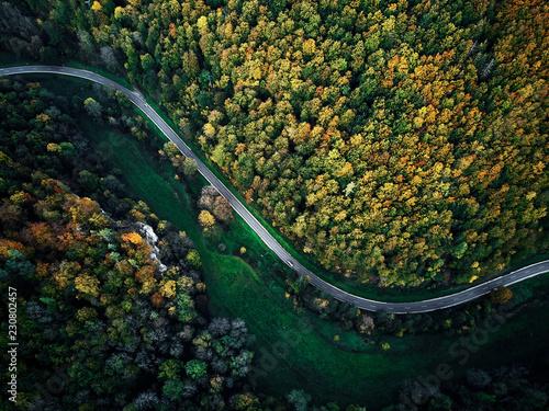 ulica-miedzy-jesiennymi-drzewami-w-lesie-powietrzny-drone-widok-z-gory-dji-mavic