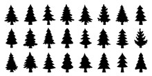 Various Christmas Tree Silhoue...
