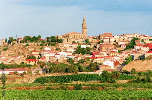 La Rioja. Spain. Vineyards and beautiful views of the ancient city Briones.
