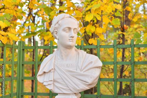 Canvas Print Statue of Titus Roman Emperor.