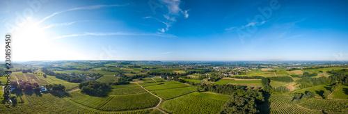 Canvas-taulu Aerial view, Bordeaux vineyard, landscape vineyard south west of france