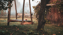 Wooden Swing In The Autumn Gar...