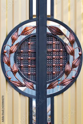 Foto op Aluminium Vlinders in Grunge beautiful decorative metal elements forged wrought iron gates