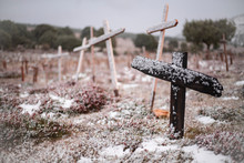 Snowy Natural Cemetery With Cr...