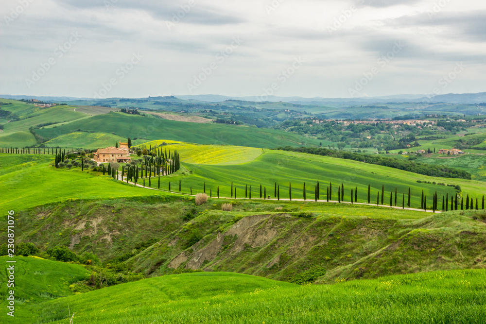 green fields near Volterra in Tuscany