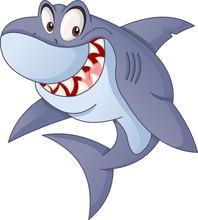 Cartoon Cute Shark. Vector Illustration Of Funny Happy Animal.