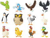 Fototapeta Fototapety na ścianę do pokoju dziecięcego - Group of cartoon birds. Vector illustration of funny happy animals.