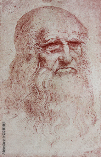 Photo An illustration of Leonardo Da Vinci's portrait from a vintage book Leonard de V