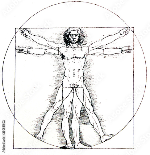 Vetruvian human, Measures of Human body by Leonardo da Vinci, illustrated in a v Canvas Print