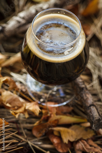 Foto op Aluminium Bier / Cider Glass of beer in autumn forest