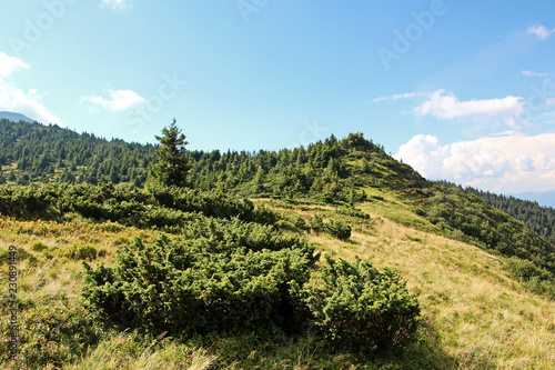 Spoed Foto op Canvas Blauwe hemel Landscape views of the mountains of the Carpathians, Ukraine.
