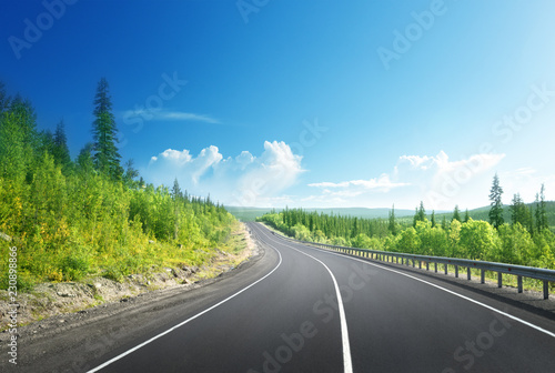 Fototapety, obrazy: road in north mountain forest
