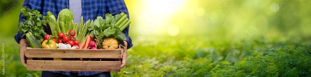 Fototapety, obrazy: Hands holding wooden box with vegetables
