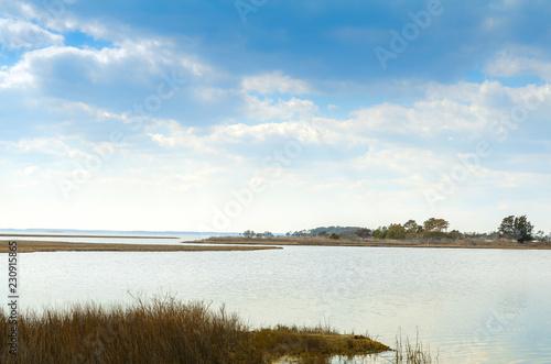Fotografie, Obraz  Beautiful marsh scenery of Assateague Island National Seashore in Maryland, alon