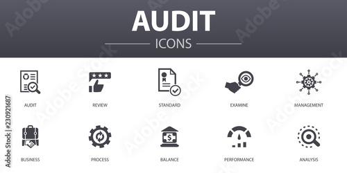 audit simple concept icons set Canvas Print