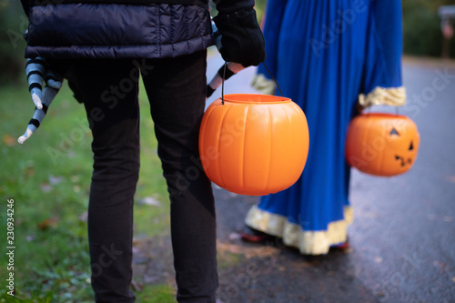 Fotografia, Obraz  Children with Halloween pumpkin baskets during trick or treat session
