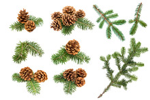 Christmas Pine Cones And Branches