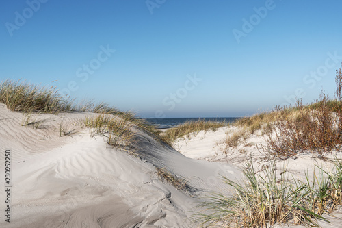 Sandy dunes by Baltic sea, Liepaja, Latvia.