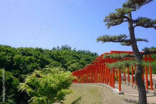 Torii gates of the Takayama Inari Shrine in Aomori Prefecture. Canvas Print